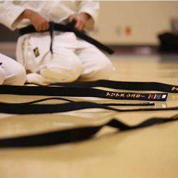 bullying, martial arts